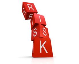 Risk Consuting